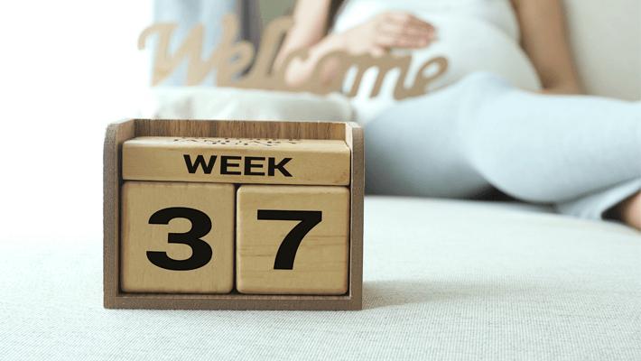 semana 37 de gravidez